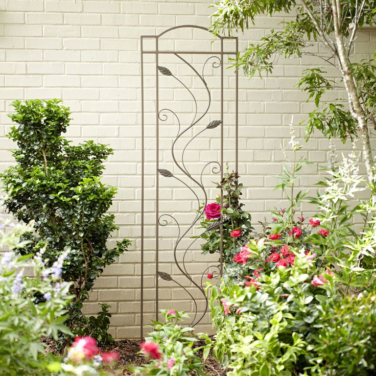 Shop Garden Treasures 20 In W X 6 Ft H Rust Leaf Garden Trellis