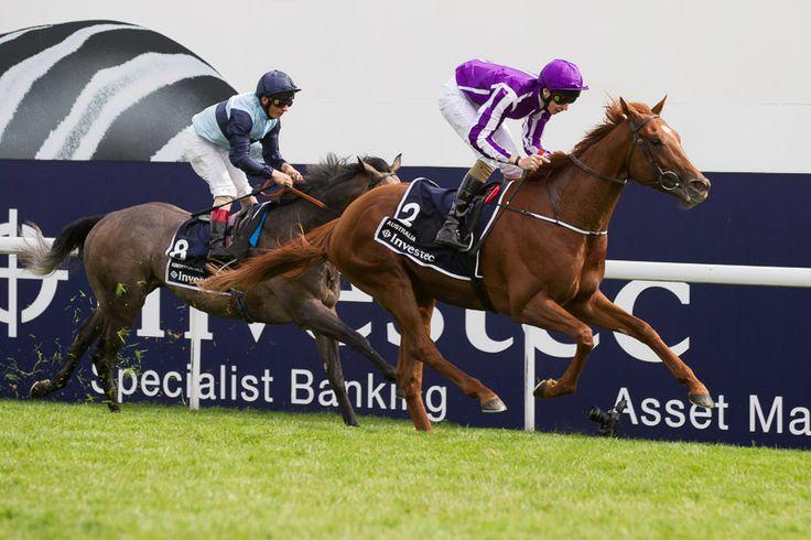 Australia winning The Derby, Epsom 7th June 2014. Horse