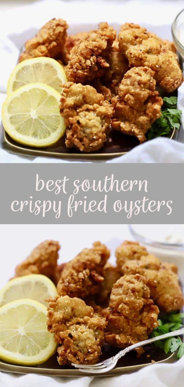 Best Southern Crispy Fried Oysters Gritsandpinecones Com Recipe Fried Oysters Oyster Recipes Seafood Dinner