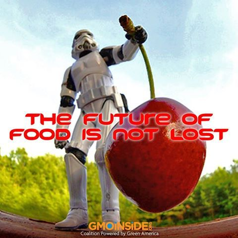 The Future Of Food Is Not Lost. More: http://www.cbsnews.com/video/watch/?id=50158495n: Worth Reading, Books Worth