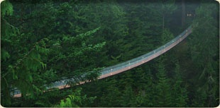 """Capilano suspension bridge, just a few minutes drive from my childhood home. Can you say """"sway""""?"""