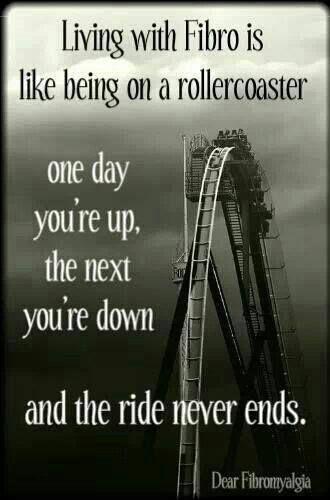 like riding a roller coaster photo rollercoaster_zpsbec8028d.jpg