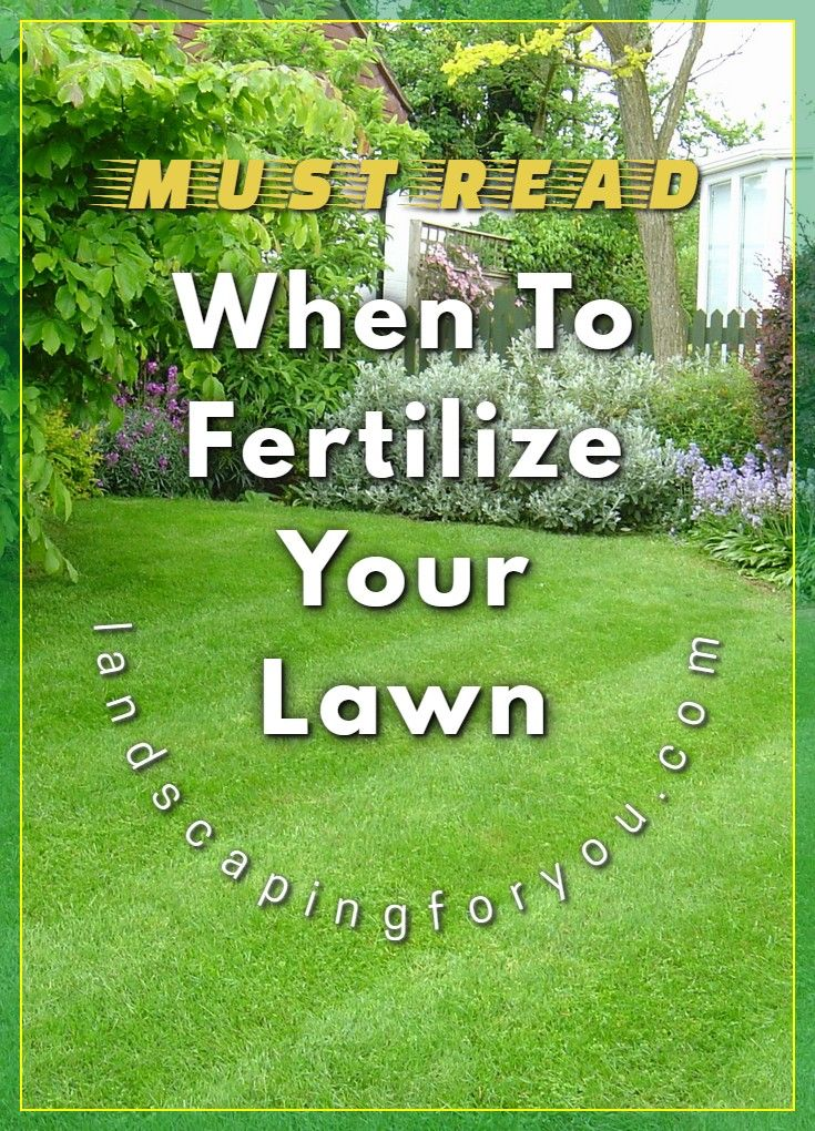 Pin On When To Fertilize Lawn