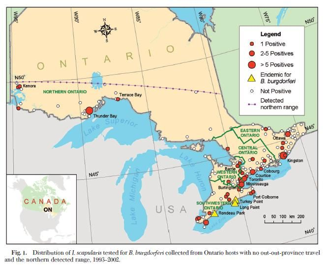 Map Of Areas In Ontario Where Lyme Disease Isd A Risk