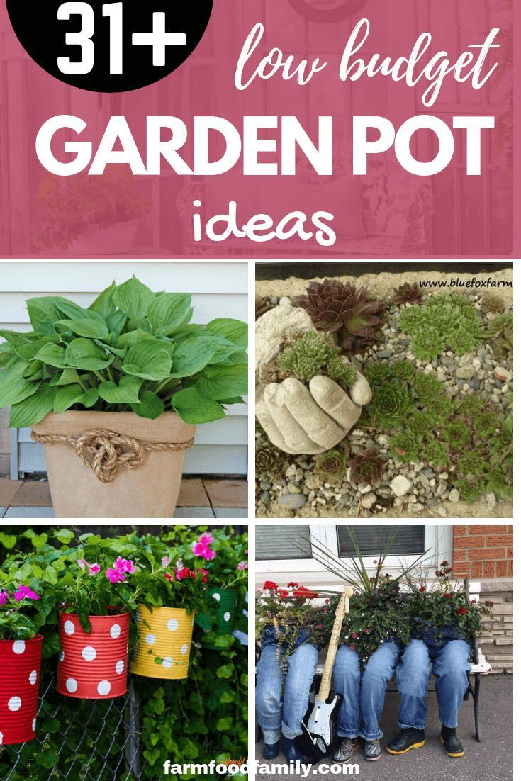 31 Stunning Low Budget Garden Pot And Container Ideas Free