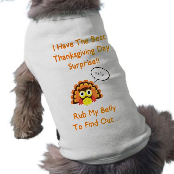I'm Going To Be A Big Brother Dog Shirt - Thanksgiving Pregnancy Announcement Dog Shirt - Dog T-Shirt - Thanksgiving Dog TShirt by lcdezines on Etsy https://www.etsy.com/listing/209449411/im-going-to-be-a-big-brother-dog-shirt