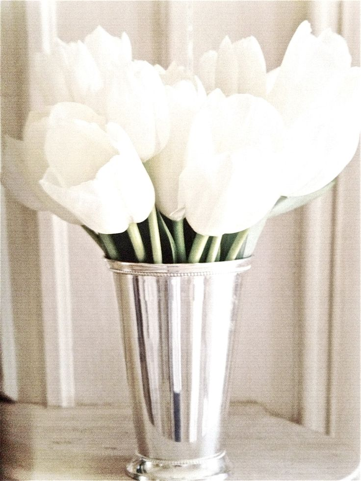 Simple elegance.  White tulips in a silver mint julep cup