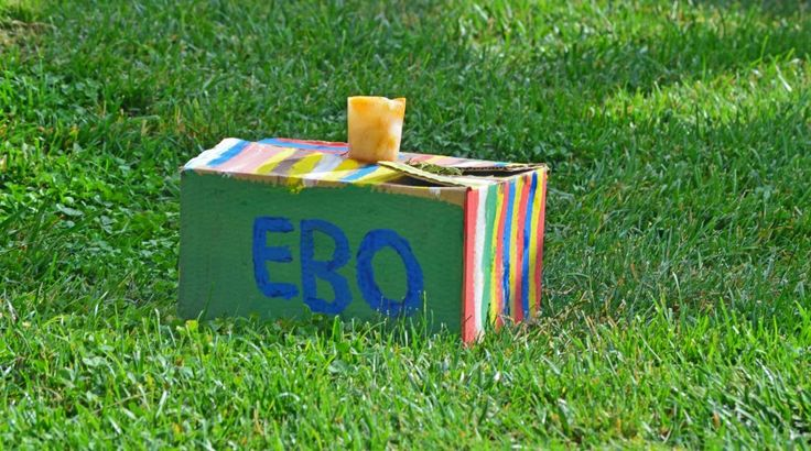 Los niños y niñas valencianos decoraron con bonitos colores una caja con el nombre de Ebo: http://www.viajarenfamilia.net/el-gorila-ebo-cumple-meses-en-bioparc/