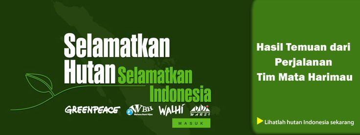 Melindungi Hutan Indonesia | Greenpeace Indonesia