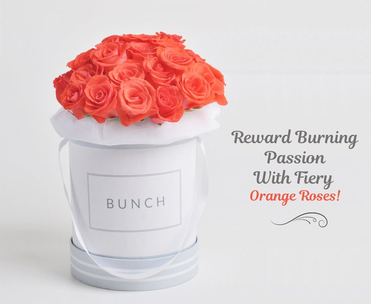 Find a perfect way to express your feeling to special person in your life, Send a flawless blossom of pretty orange roses to say how much they are mean to you. Whatever the occasion, this bunch is guaranteed to delight your loved one.
