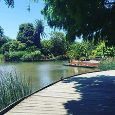 Royal Botanic Gardens, South Yarra | 19 Places To Really Chill The Fuck Out In Melbourne