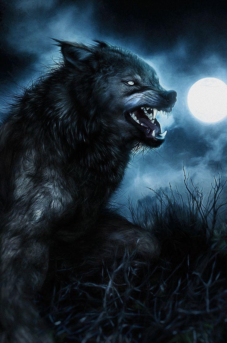 264 best images about Werewolves on Pinterest | Wolves ...