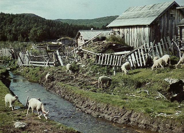 Sami Village in Russia, near the Norwegian border. Kolttakönkään lapinkylä. Samisk landsby i Petsamo. Boris Gleb. Borisoglebski, Skoltfoss.  Photo by Hans Wagner, 1939.