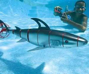 Remote Control Shark Cool Pinterest Shark And Remote