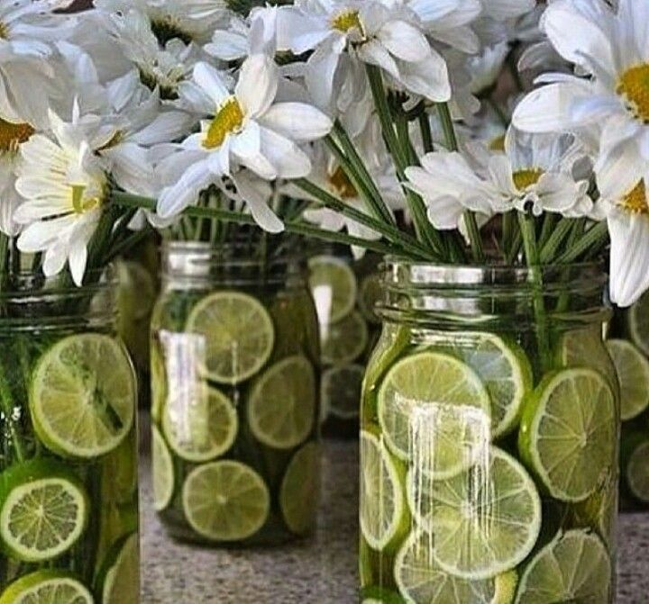 Limoes e margaridas