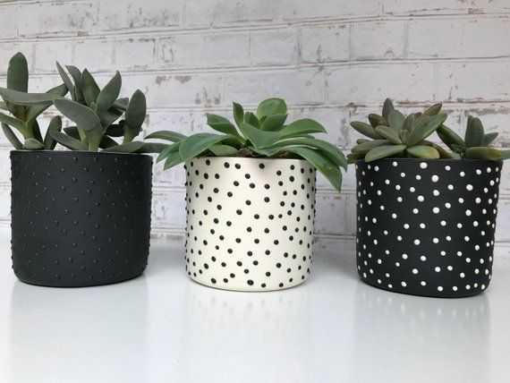 Made To Order Set Of 3 Black And White Dotted Small Ceramic Planters Succulent Planters In 2020 Handmade Ceramic Planters Small Ceramic Planter Succulent Planter