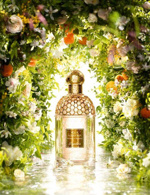 Guerlain new #fragrance Nerolia Bianca in the Aqua Allegoria line (from PerfumeShrine.com) #perfume