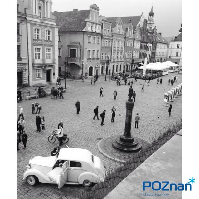 Poznan Poland, [fot. H. Sabok-Rzepka]