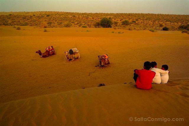 La puesta de sol en el desierto del Thar, Jaisalmer