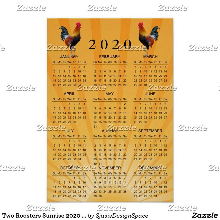 Two Roosters Sunrise 2020 Wall Poster Calendar Zazzle Com
