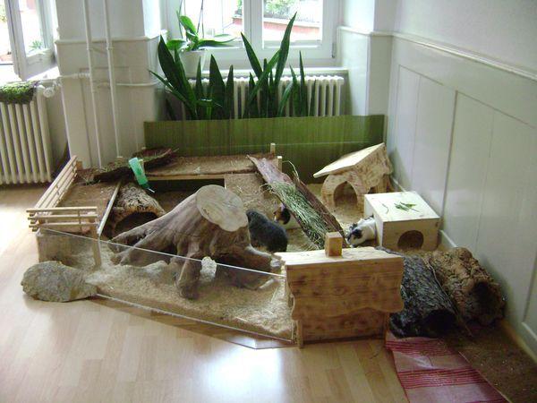 die besten 25 hasengehege ideen auf pinterest kaninchen stift kaninchen spielplatz und. Black Bedroom Furniture Sets. Home Design Ideas