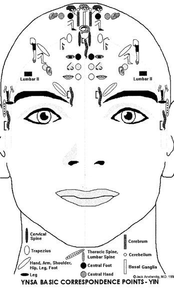 48 mejores imágenes de acupuntura facial en Pinterest