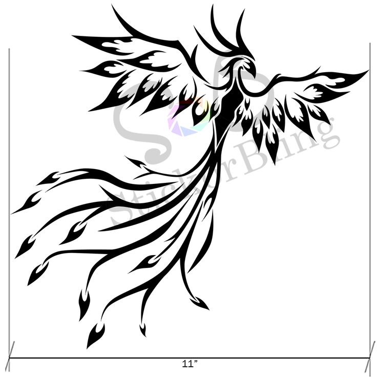 1000  images about vinyl decals on pinterest
