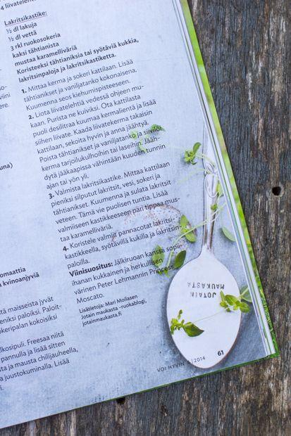 Voi Hyvin lehdessä juttua Mari Moilasen uudesta Sitä Parempi soppa - keittokirjasta - kuvissa lusikallinen hyvää mieltä meiltä !