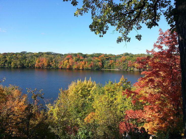 Höstens vackra bladverk.