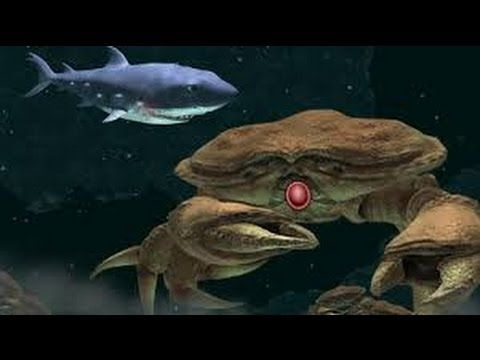Strangest Fish Ever Hungry Shark Evolution Youtube