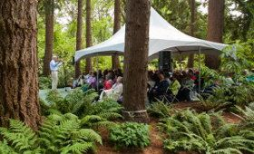 Powellswood gardens hosts a storytelling festival each year. I was fortunate to volunteer and listen to great storytellers