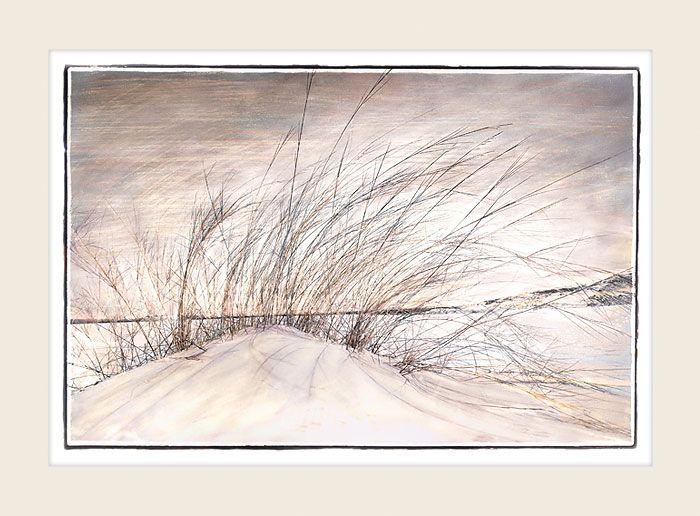 Dune Breeze - Marlene Neumann Fine Art Photography  www.marleneneumann.com  neumann@worldonline.co.za