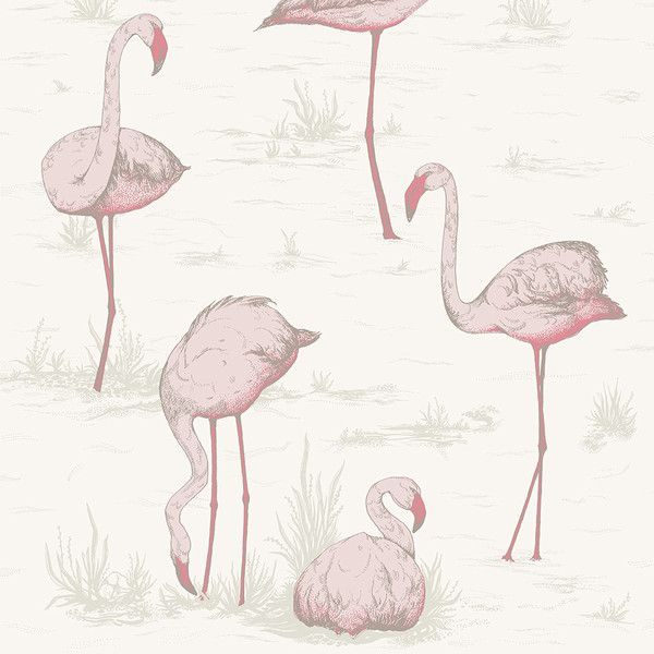 Cole & Son Flamingos Wallpaper - 95/8045 (25.170 HUF) ❤ liked on Polyvore featuring home, home decor, wallpaper, pink, pink pattern wallpaper, contemporary wallpaper, paper wallpaper, pink wallpaper and cole son wallpaper