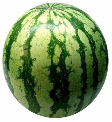 watermelon melon fruit