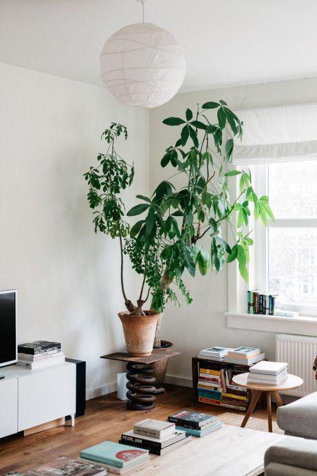 At home in Amsterdam with Mark de Lange — Freunde von Freunden