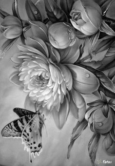 grey scale butterfly drawings - Google Search