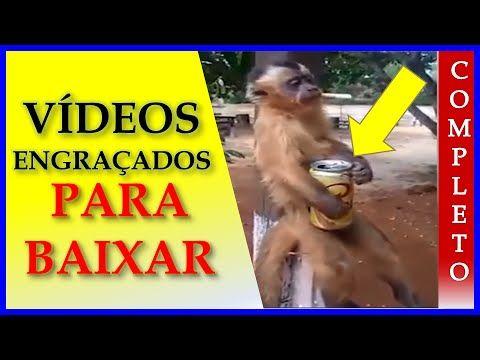 Videos Engraçados Para Baixar - Baixar Videos Engraçados Para Whatsapp 2