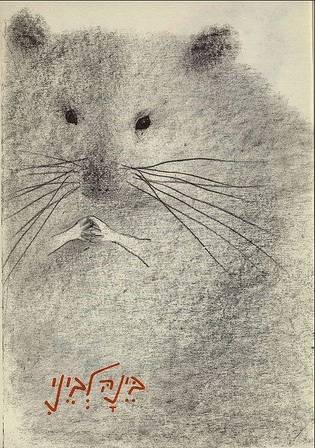 Good senses and instincts - Biography of a hamster, Author and Illustrator Ruth Tzarfati, 1964