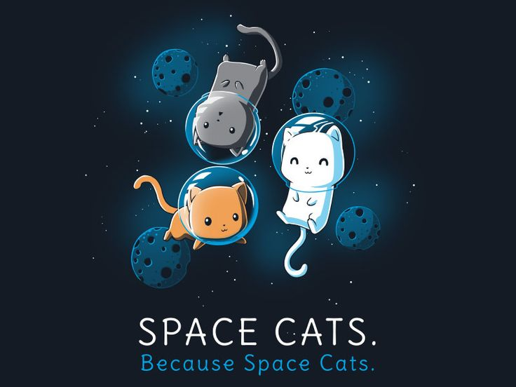 That's one small pounce for kittehs, one giant leap for all felines.