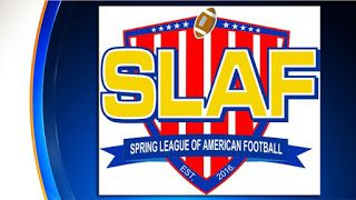 Sports Blogging Network: Will You Watch The Spring Football League?