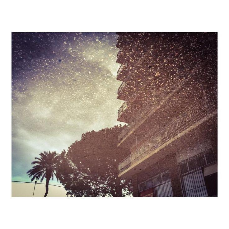 An upside down landscape _ Vistas del revés   #suelo #soil #upsidedown #delreves #upsidedown #paisaje #inversion #paisajes #nubes #cielo #paysage #inversionjunkie #landscape_lovers #landscapephotography #insta_land #landscapelovers #landscape_captures #landscapes #landscapelover #igcentric_nature #fabscape #vista #vistas #imarchi Originally posted in Instagram http://ift.tt/2uugBjl on July 01 2017 at 11:04AM An upside down landscape _ Vistas del revés  suelo soil upsidedown delreves…