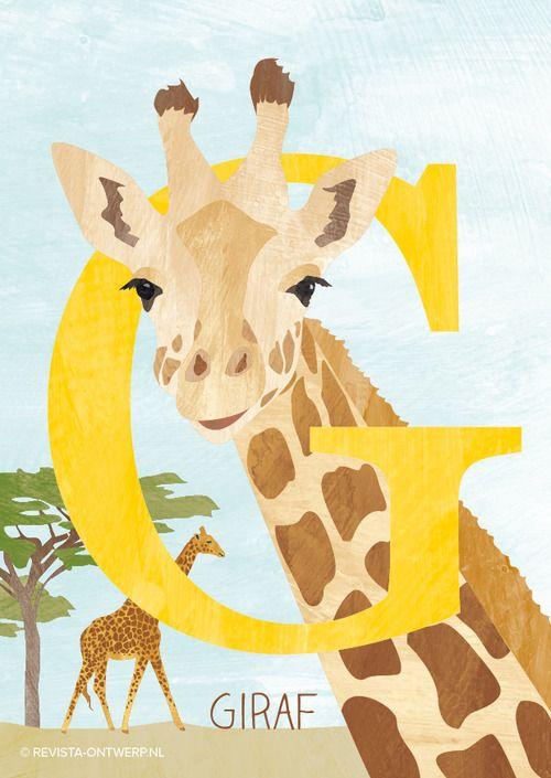 De G is van giraf. Door zijn lange nek kan hij bij de blaadjes in de hoogste bomen!