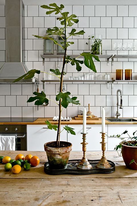 fig + kitchen + tiles + nordic + styling