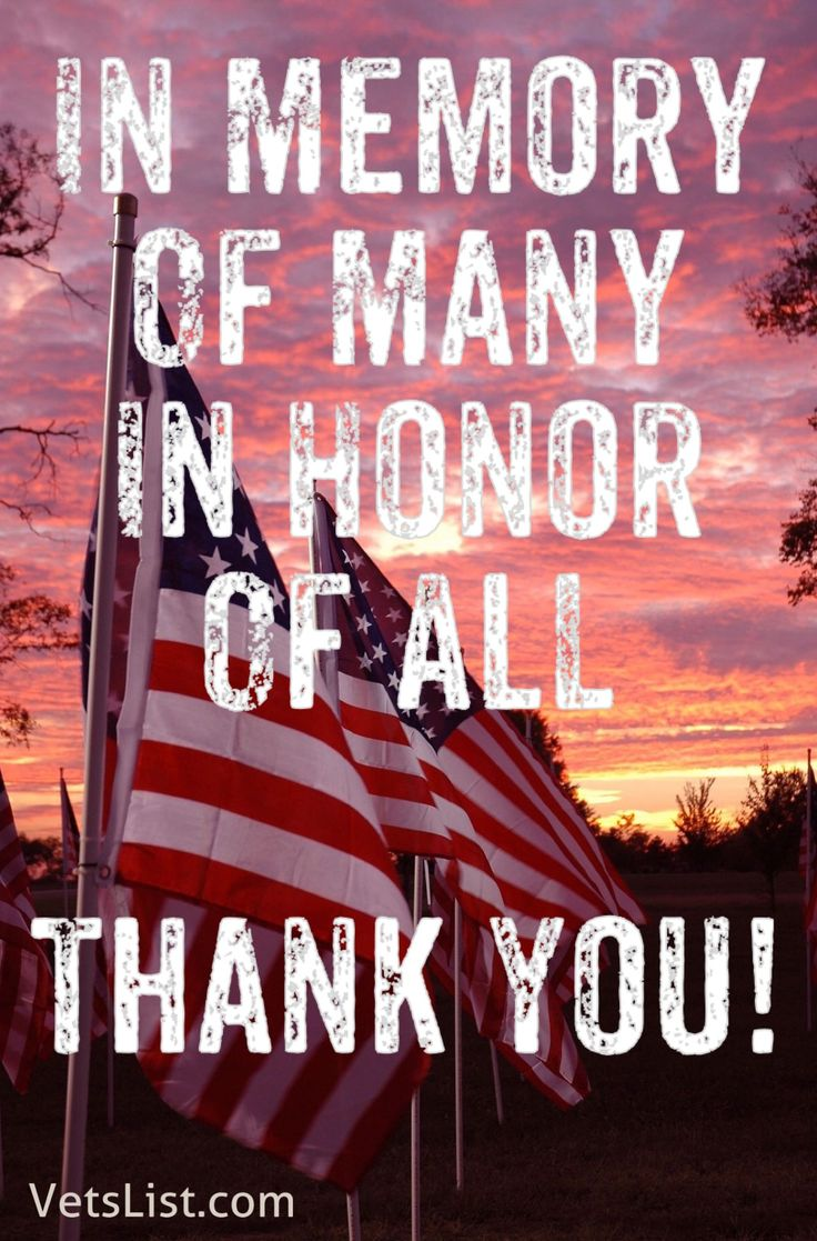 Honor The Fallen Heroes 431 best Thank