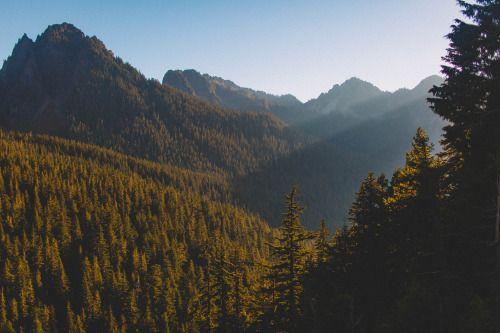 Light Cascading in Mt Rainier National Park.by Nicholas Peter Wilson