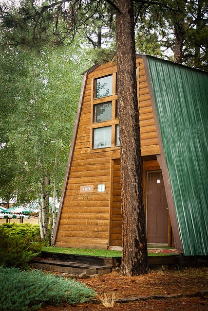 A-Frame Rustic Cabin. I would be so very happy in that A-Frame house and I could BE ME living in it. I no longer like big Fancy Homes for me. I wish to downsize my living space.