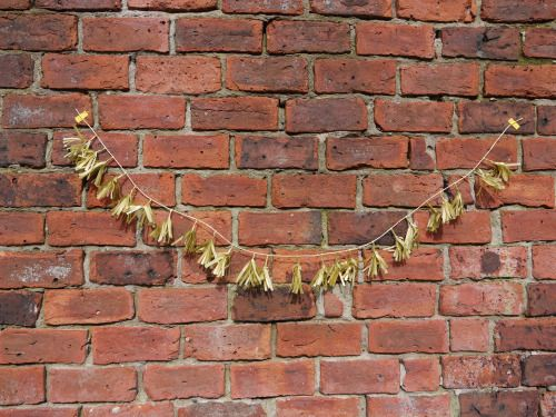 Gold tissue tiny tassels from the metallic collection  Handmade paper decorations by Paper Street Dolls