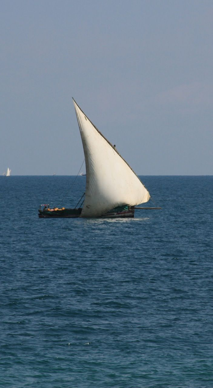 Dhow off Stone Town.