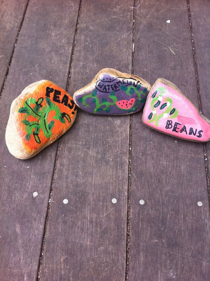 Garden labels: paint rocks from the garden and label them with the names of the plants! Fun and easy