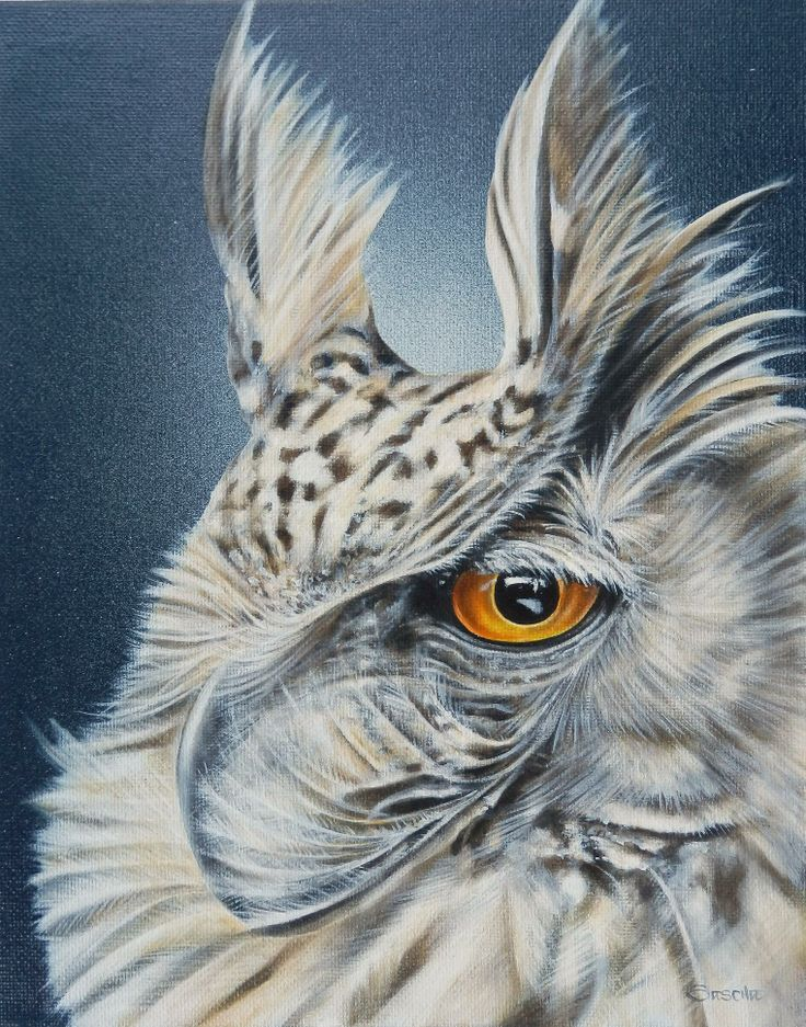 African Horned Owl: Oil on Canvas